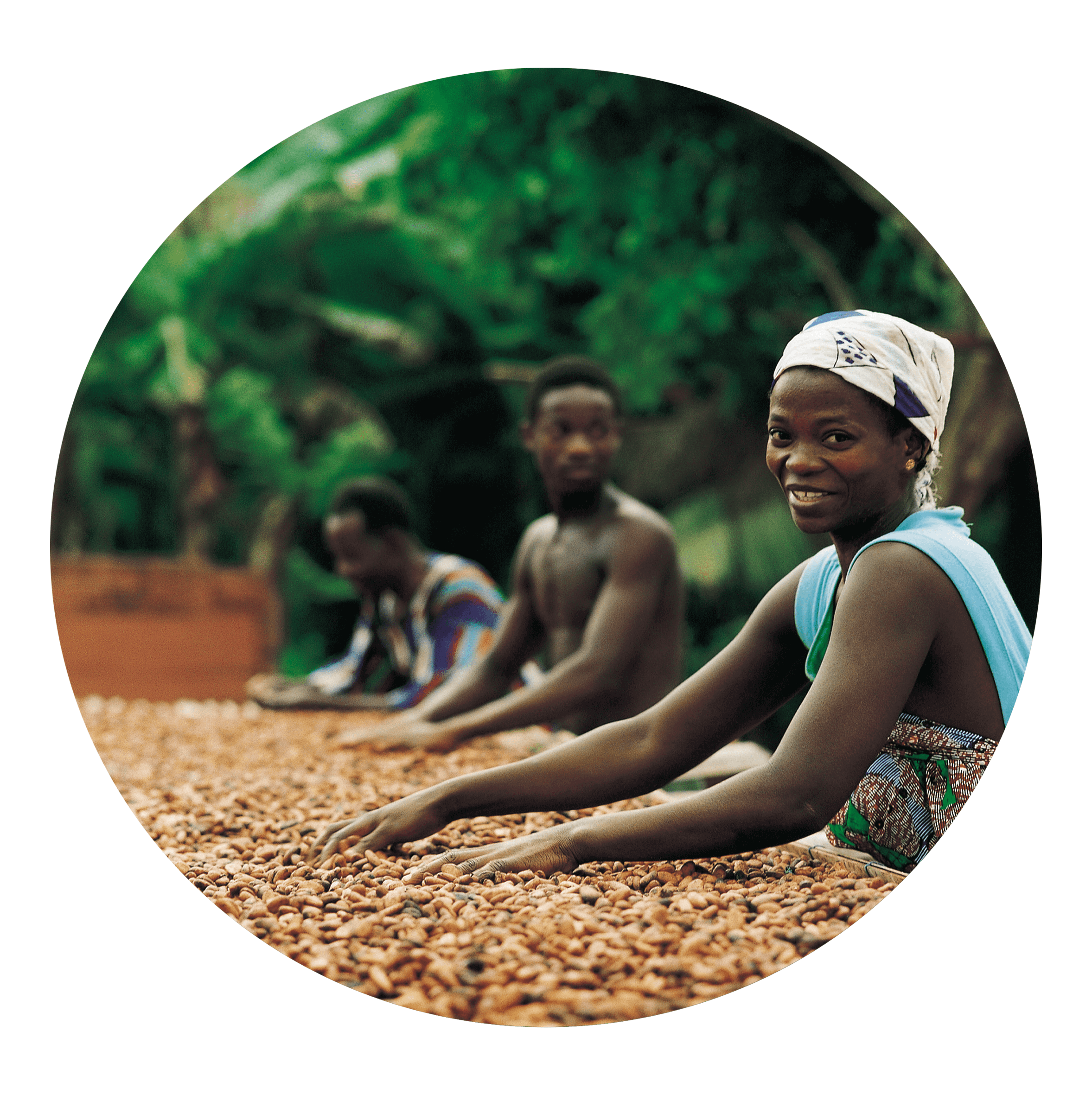 Cocoa Workers