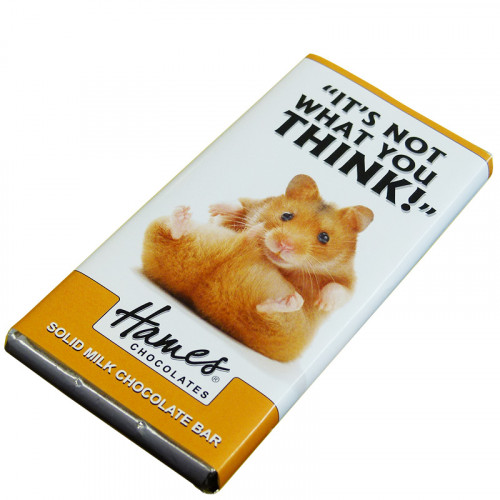 Animals with Attitude - 80g Milk Chocolate Bar Wrapped in Silver Foil Finished with a Themed Chuckle  Hamster 'Not What You Think' Wrapper x Outer of 12