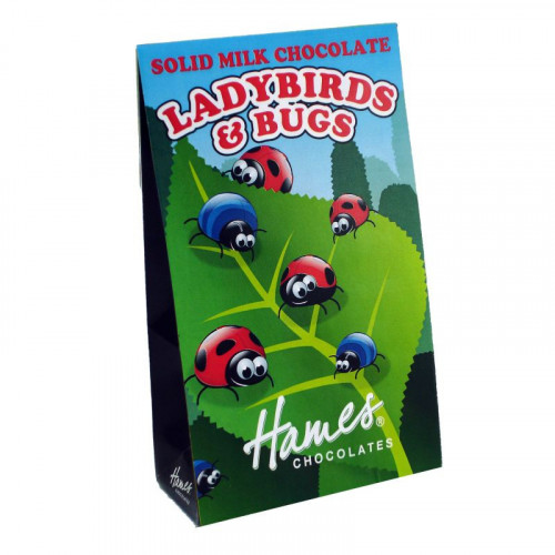 Hames - Solid Milk Chocolate Shaped Ladybirds & Bugs 100g  x Outer of 12