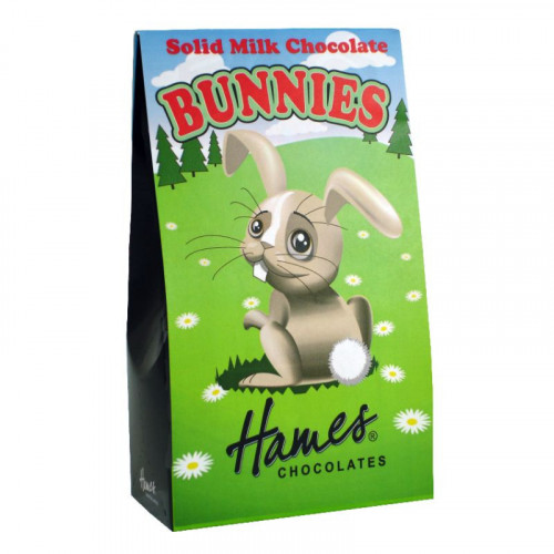 Hames - Solid Milk Chocolate Shaped Bunnies 100g  x Outer of 12