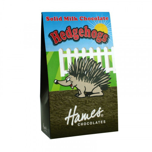 Hames - Solid Milk Chocolate Shaped Hedgehogs 100g  x Outer of 12