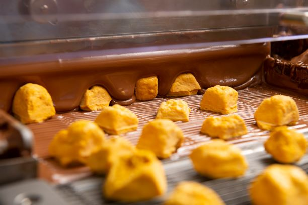 Enrobing-with-Chocolate-Hames